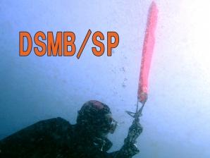 DSMB SP