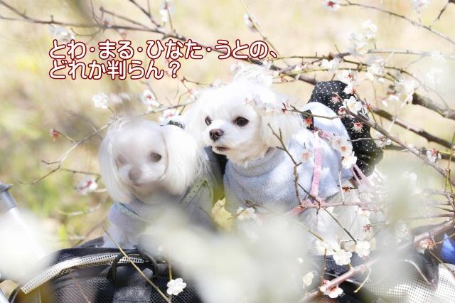 2P3A2061.jpg