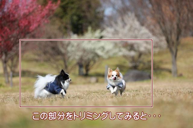 3D4A0866.jpg