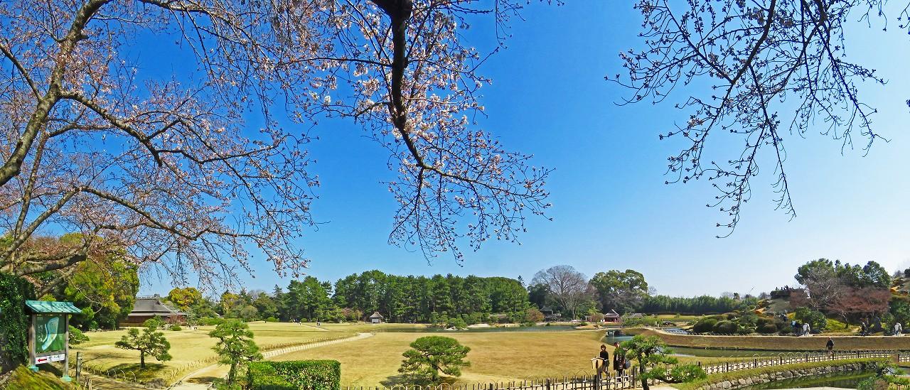 20170403 後楽園今日の南門から入って直ぐの場所から眺めた園内ワイド風景 (1)