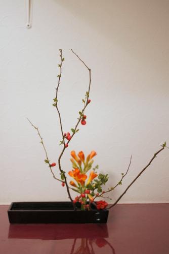 傾真型 盛り花