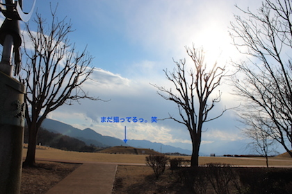 IMG_5364.jpg
