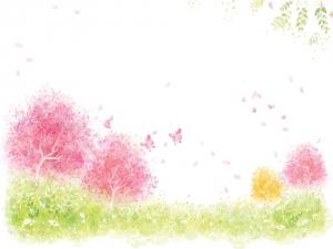 spring-back004.jpg