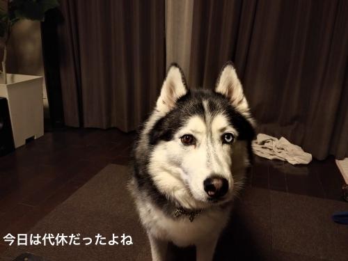 IMG_20170310_185853_Fotor.jpg