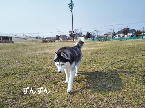 IMG_20170319_085552_Fotor.jpg