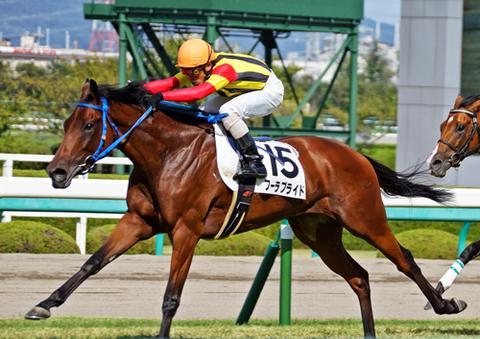 【競馬ネタ】牝馬限定 京都3200mで強そうな馬【皇后賞(春)】