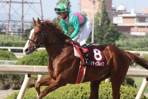 【競馬】ケイティブレイブ、次走は名古屋大賞典に デビューから1度も休み無し