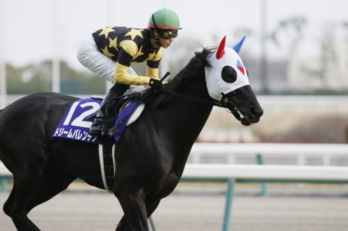 【高松宮記念】に急遽電撃参戦させたら面白そうな馬