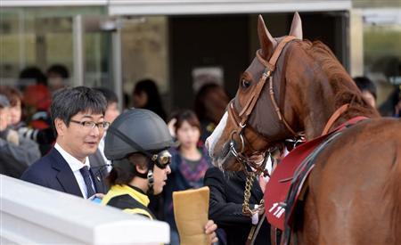 【競馬ネタ】意識高い系「○○○(競走馬名)好きだったなぁ」←入りそうなもの