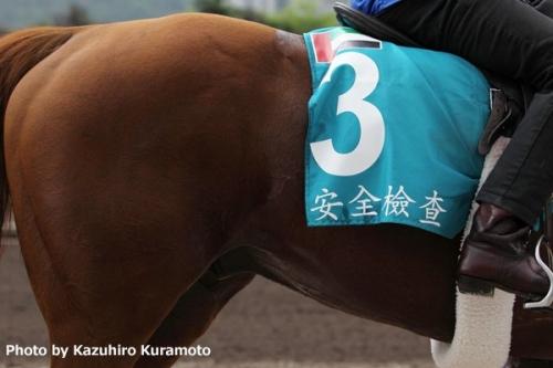 【競馬ネタ】競走馬名を漢字で書いていこう