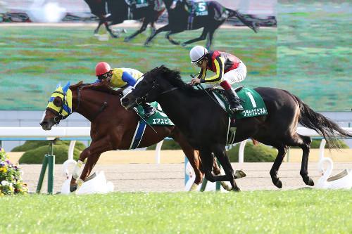 【競馬】エアスピネル・ブラックスピネル 安田記念で今年4度目のスピネル対決へ