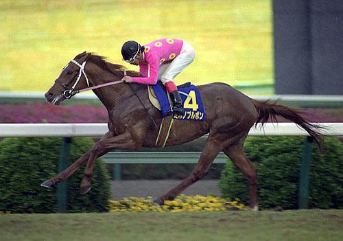 【競馬】俺の好きな馬ランキング発表するからセンスあるか評価してくれ