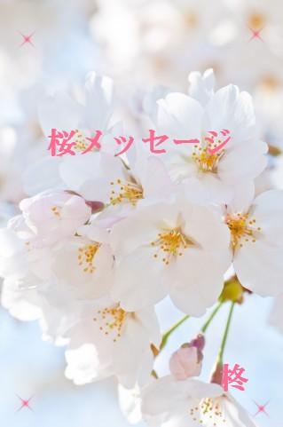 桜メッセージ