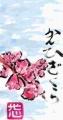 5花の絵手紙 (2)