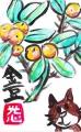 5花卉の絵手紙(4)
