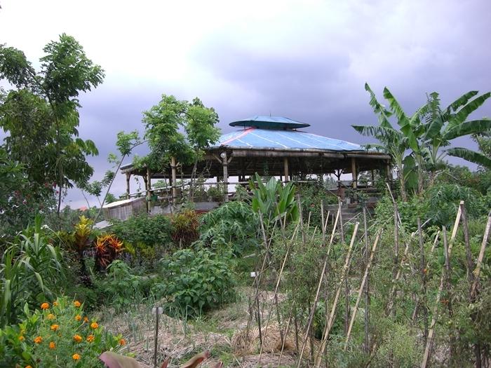 CIMG1444バリ島の思い出