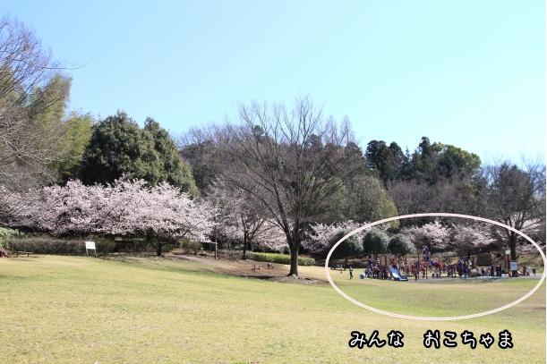 ふるさと公園 ルキちゃん00006921