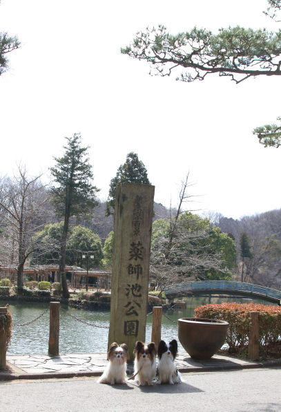 薬師池公園00007150