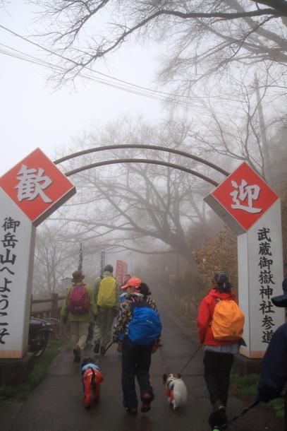 御岳山ハイキング00010578