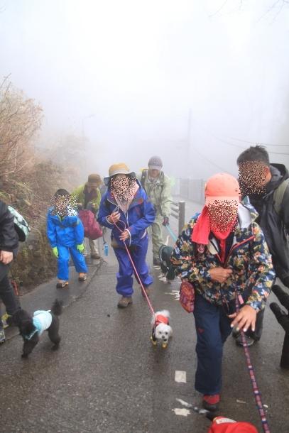 御岳山ハイキング00010591