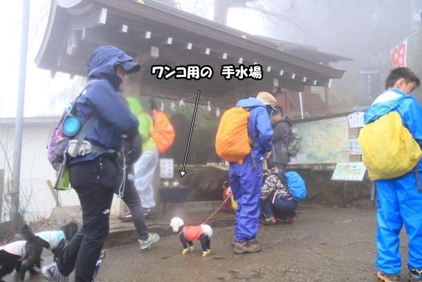 御岳山ハイキング00010601