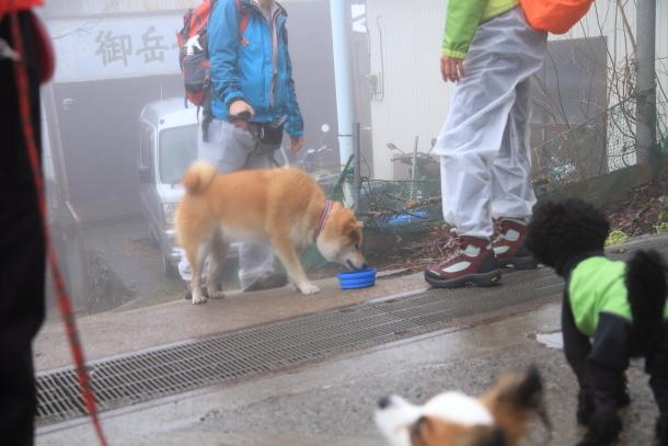 御岳山ハイキング00010602