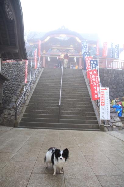 御岳山ハイキング00010637