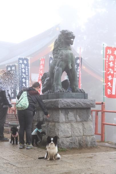 御岳山ハイキング00010646