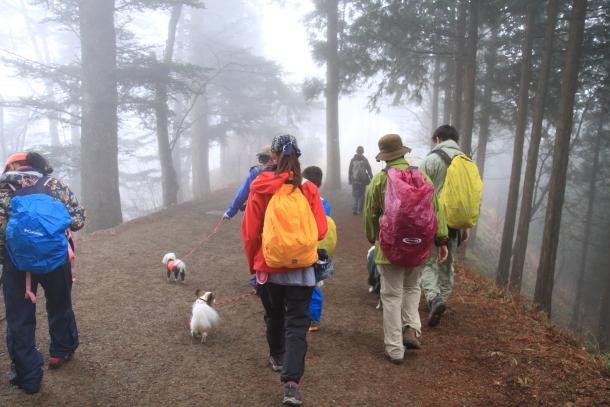 御岳山ハイキング00010660