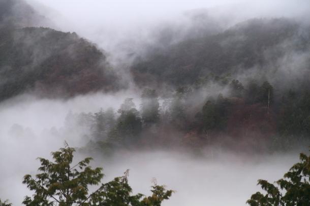 御岳山ハイキング00010673
