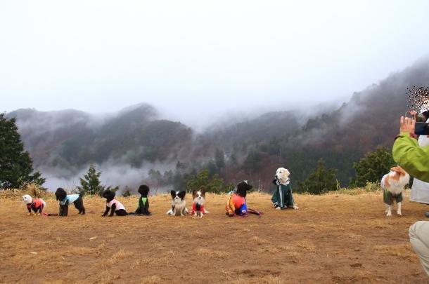 御岳山ハイキング00010676
