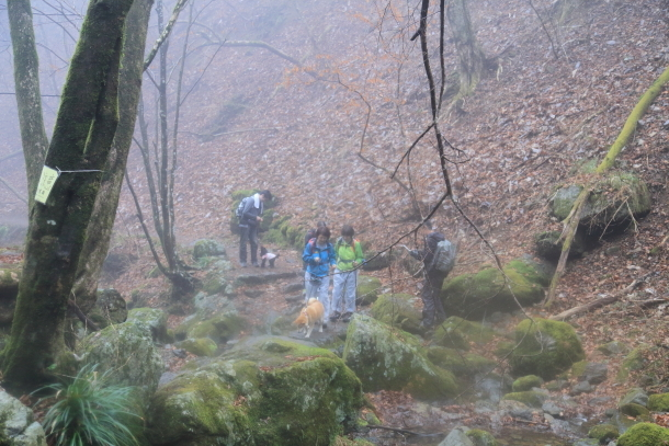 御岳山ハイキング00010684