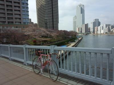 デローザで行く東京桜巡り