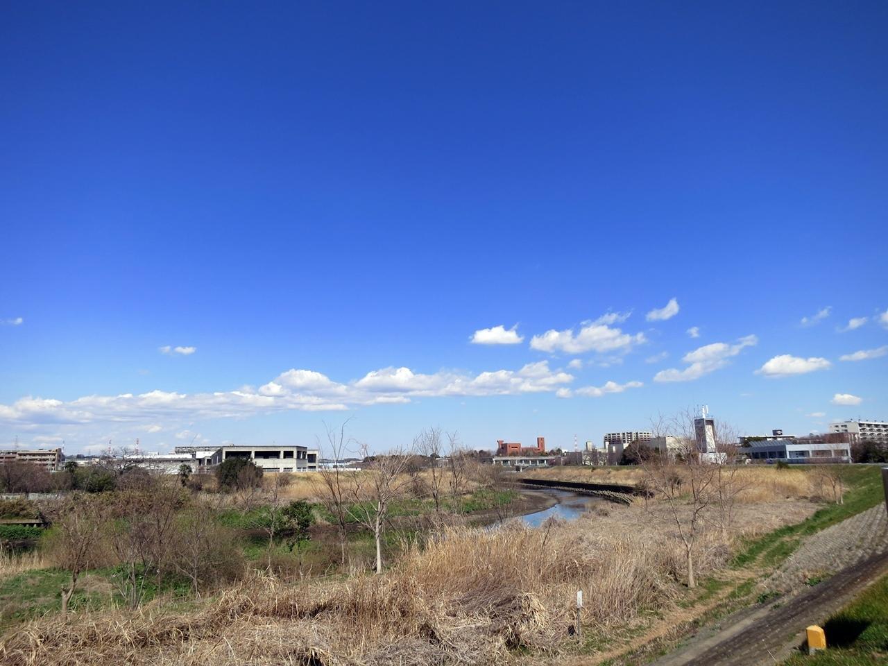 170316鶴見川-01