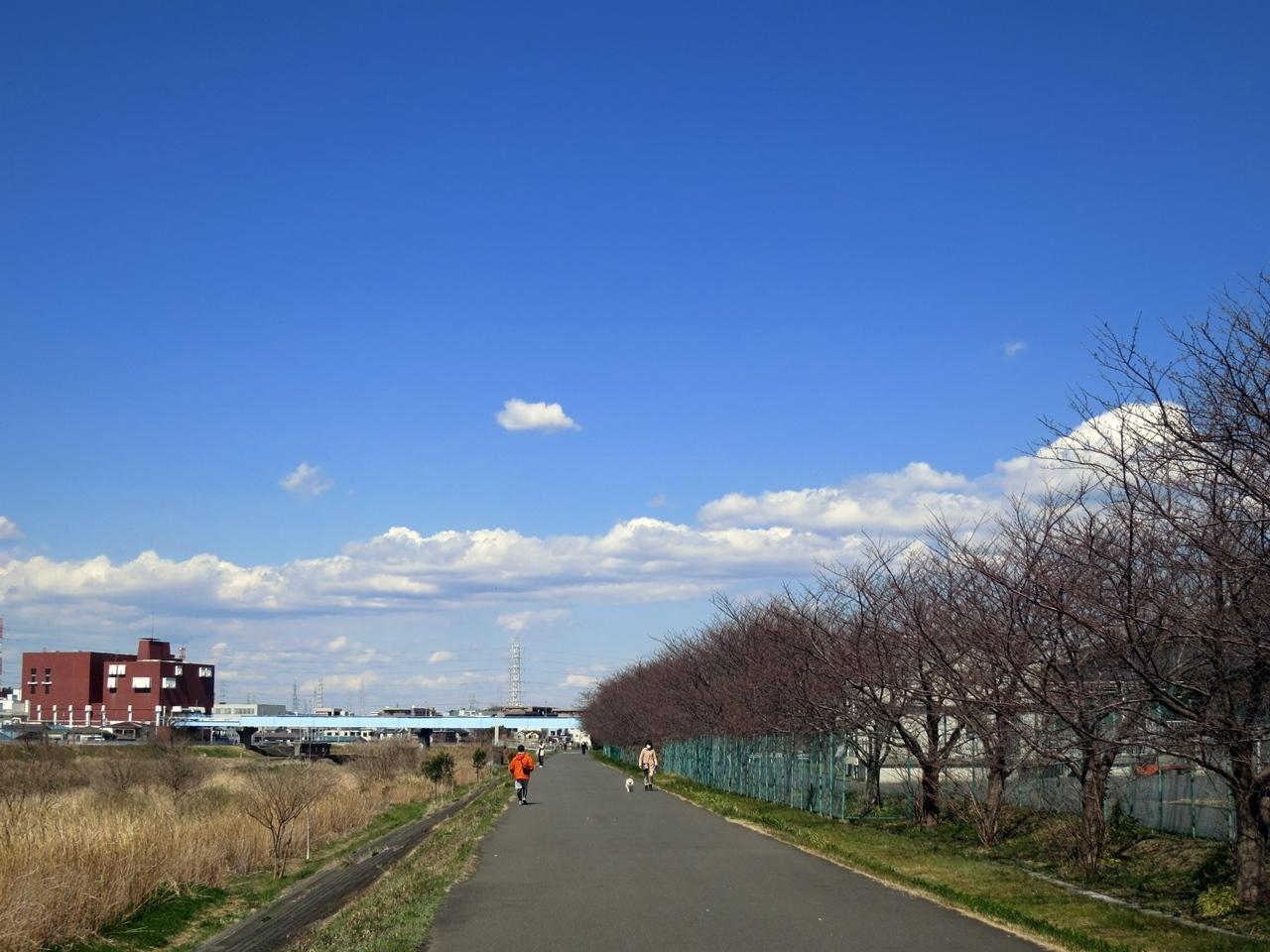170316鶴見川-02