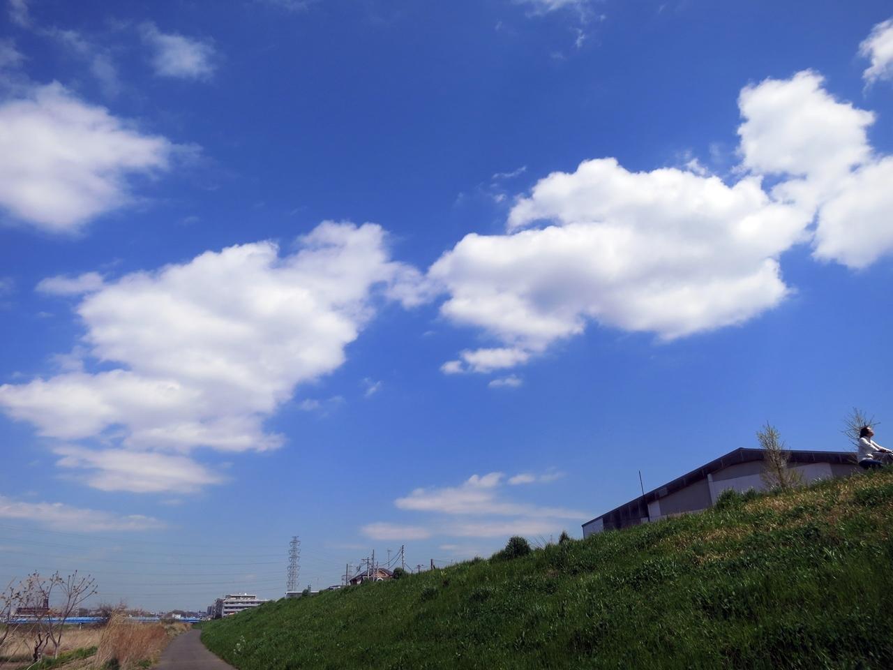 170413桜見納め-09