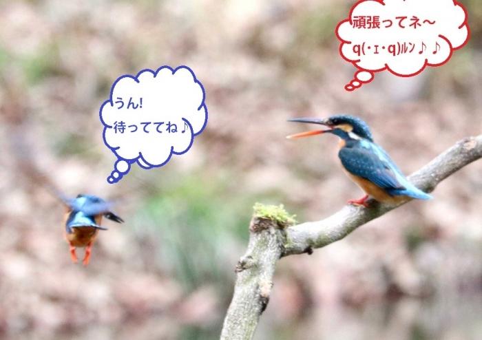 恋の季節③