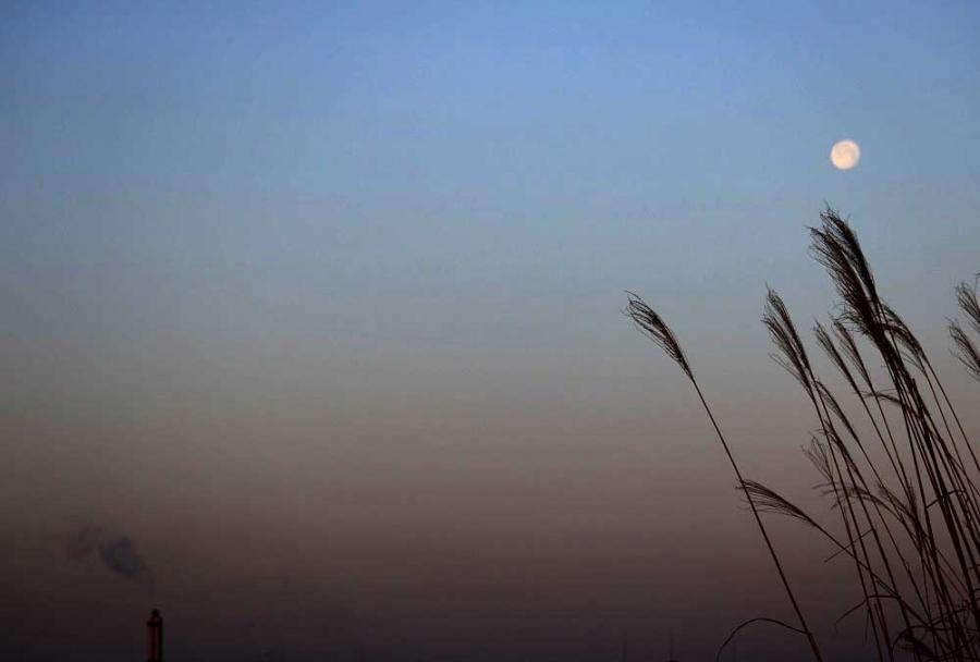 日の出前散歩