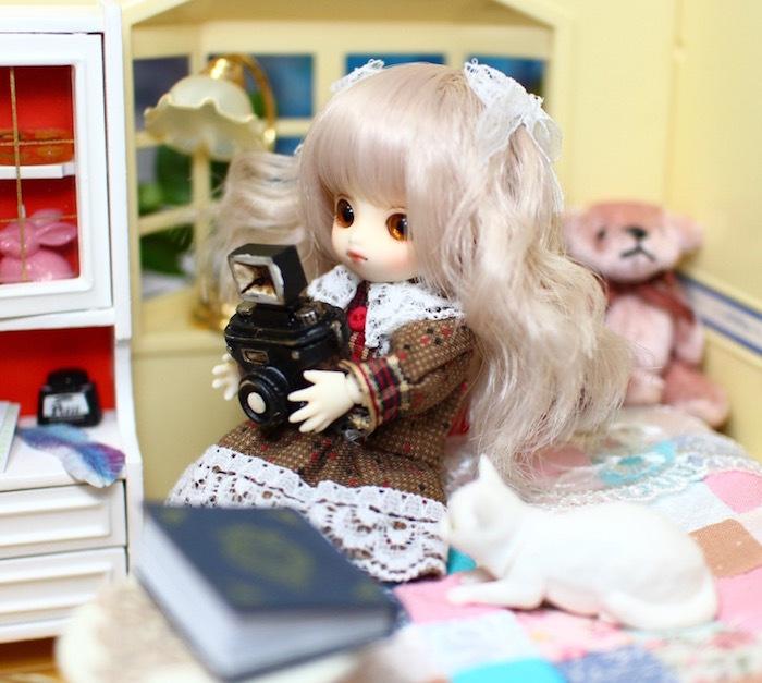 Brownie-nene0051.jpg