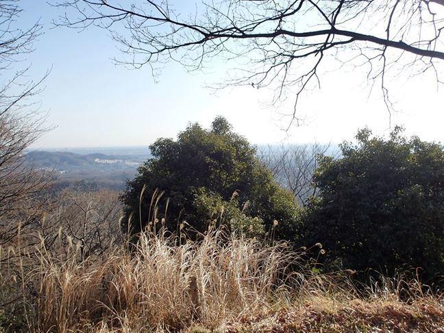 i 桜山山頂