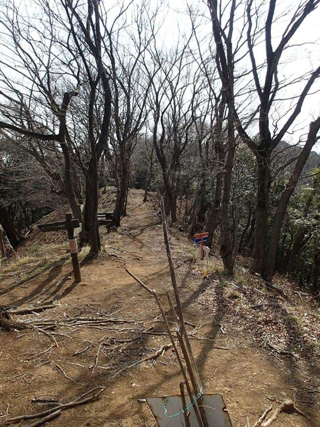 l 白山への尾根道