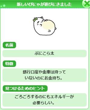 pinya (6)