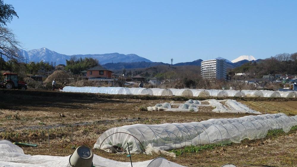 3富士山IMG_0984
