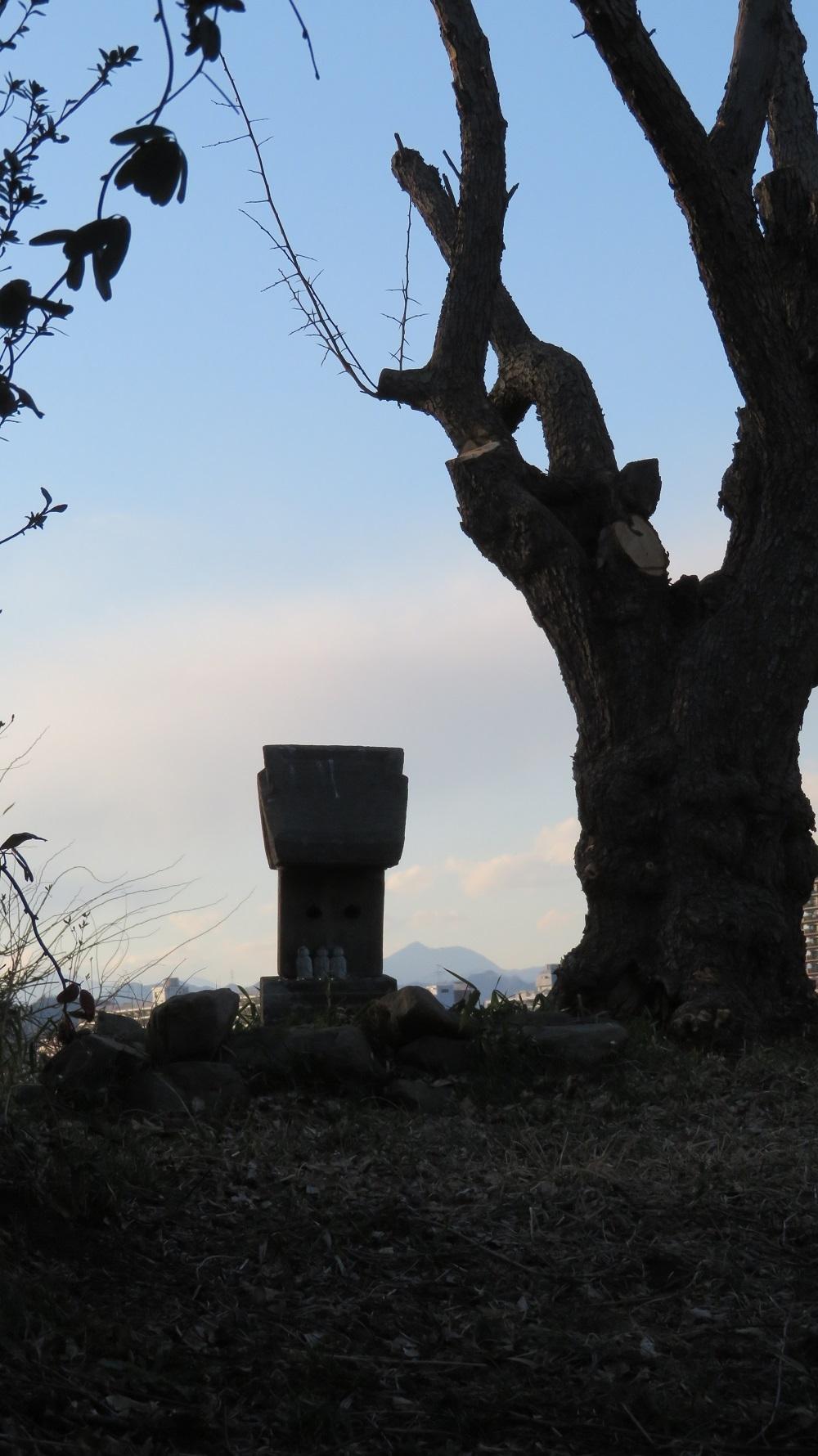 7石祠と大岳山IMG_1106
