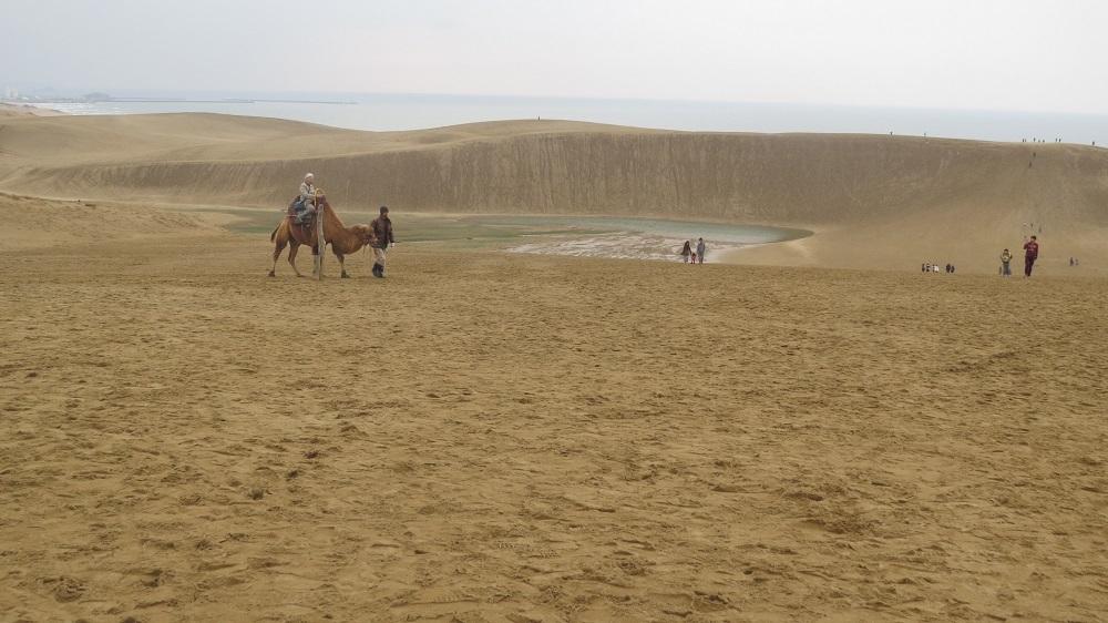 1月の砂漠IMG_0004