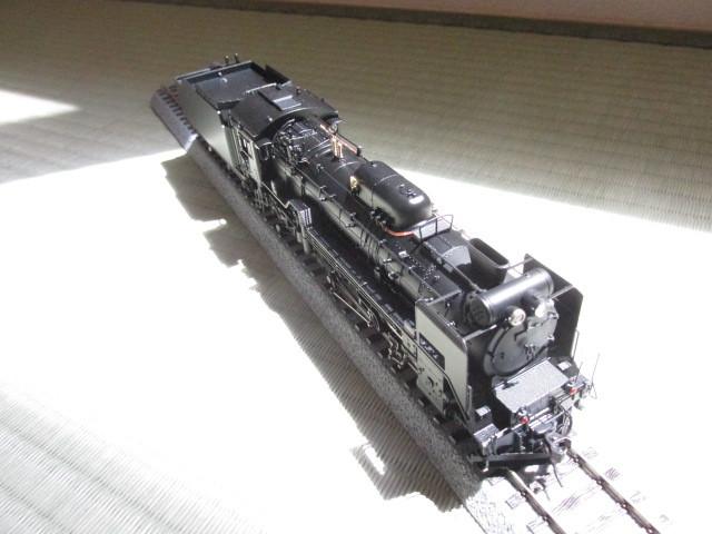 D51カンタムギースル 1