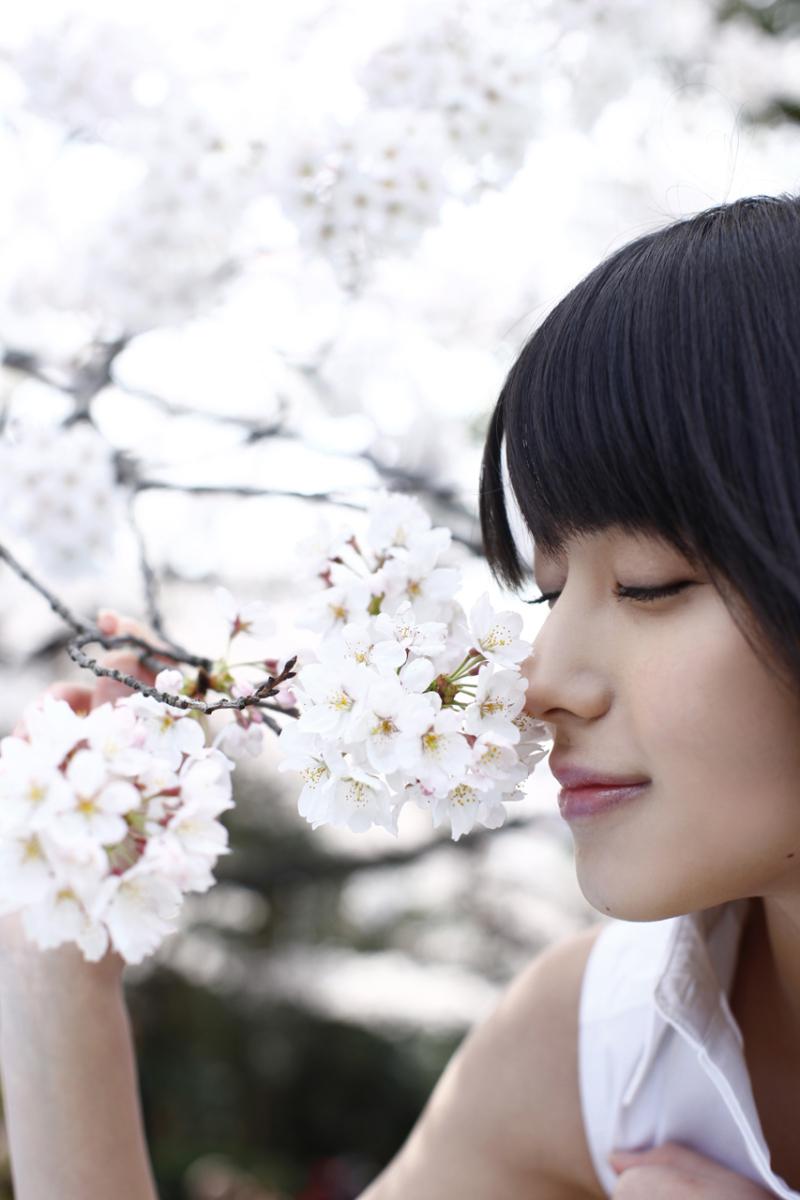 桜の花の香りを嗅ぐ矢島舞美