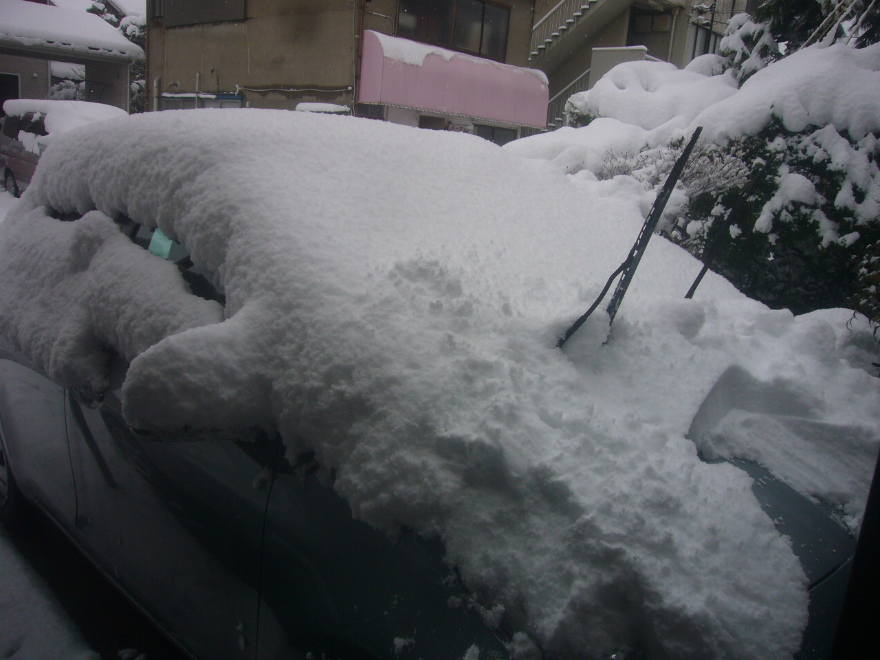 窓の雪 H29.2.11