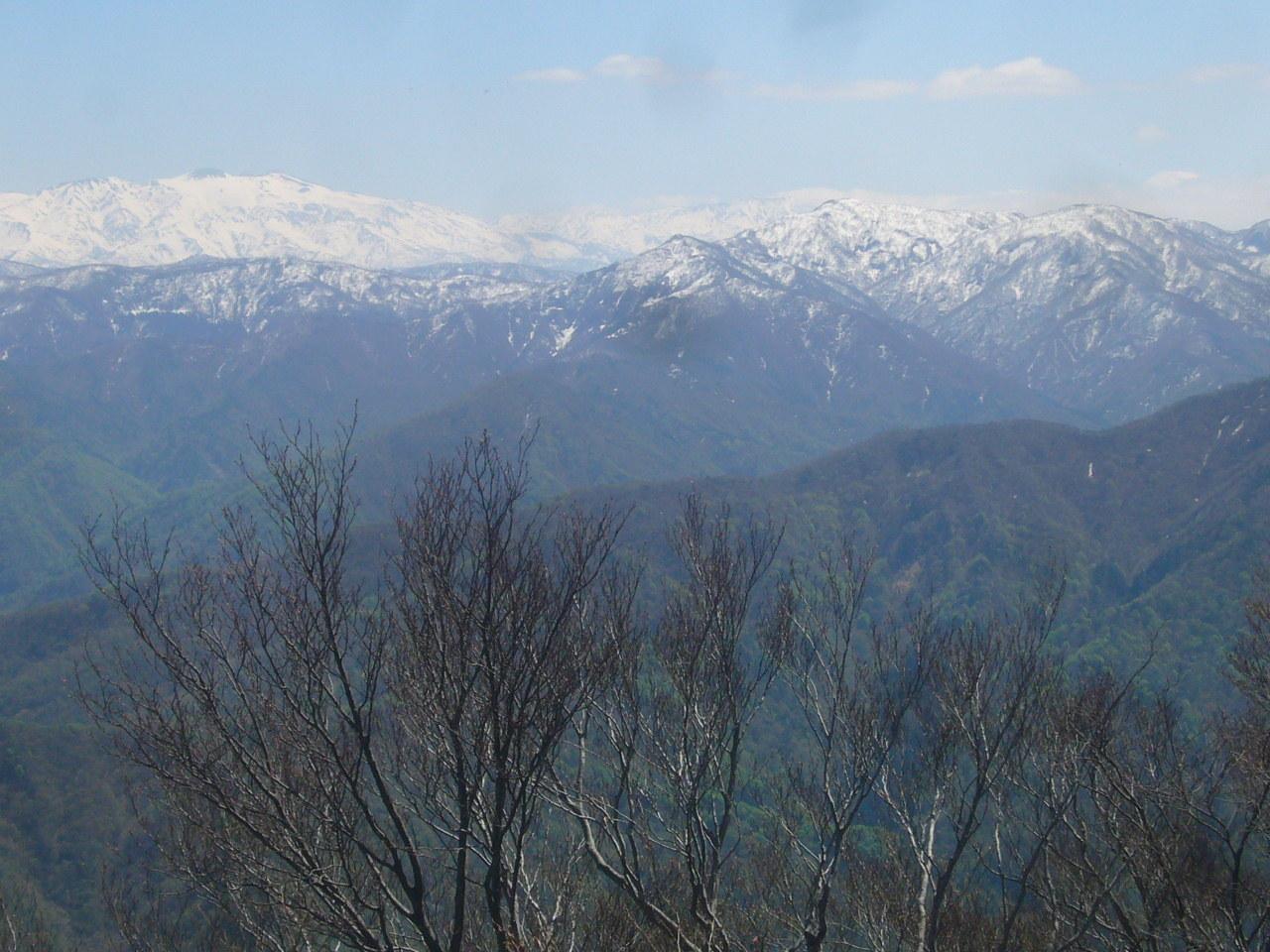 富士写が岳前山から白山と奥越の山 H29.4.24