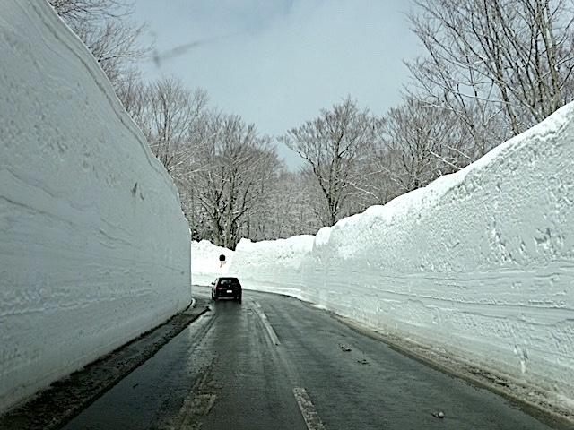 0401雪3